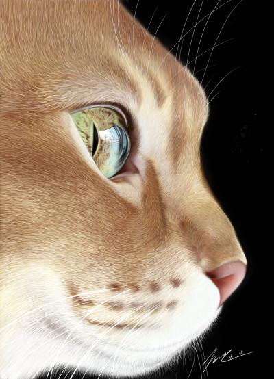 cat~ ♡♡♡ | jiminlee | Artwork | PENUP