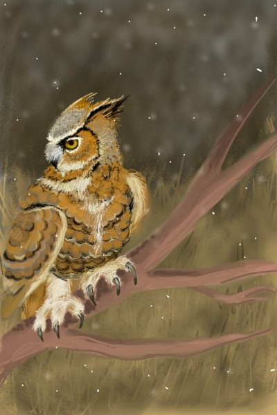 Horned Owl | .-.-.A.L.B.-.-. | Artwork | PENUP