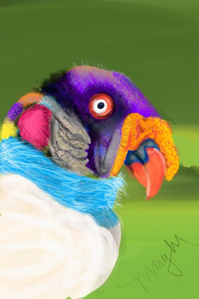 King vulture | mary | Artwork | PENUP