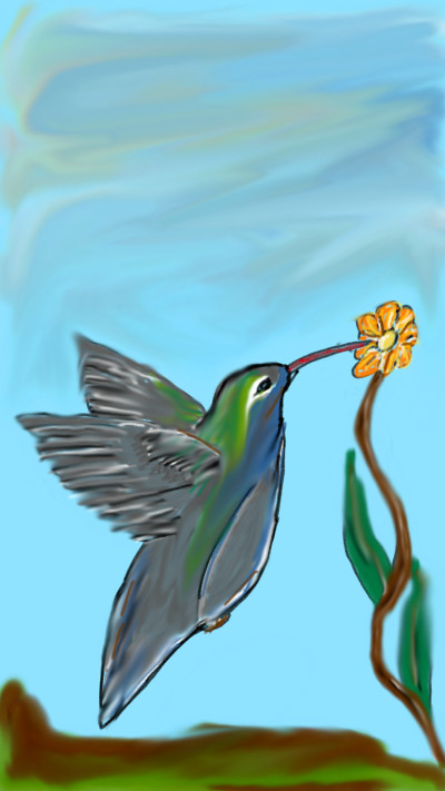 hummingbird | 3Kings | Digital Drawing | PENUP