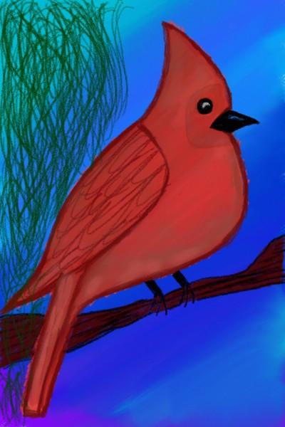 #cardinal | Pratiksaxena | Digital Drawing | PENUP