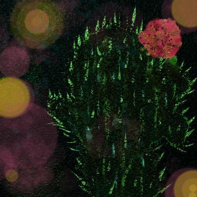 Cactus bloom | jjbinksljg2 | Digital Drawing | PENUP