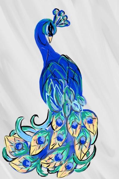 peacock | Damirijana | Digital Drawing | PENUP