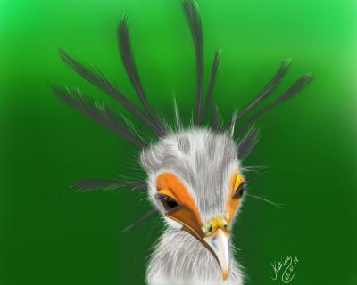 Pássaro  Serpentário | Katicia | Digital Drawing | PENUP