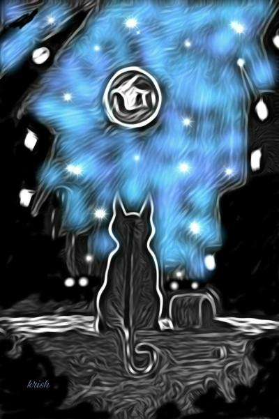 3D CUTIE CAT ♡  LOVELY MOON LIGHT   krish   Digital Drawing   PENUP