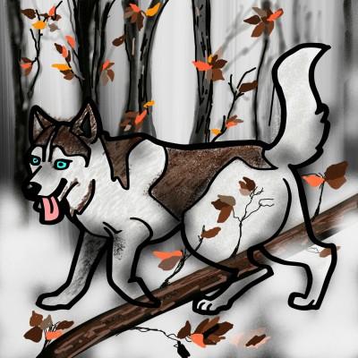 WOLF | ramdan1111 | Digital Drawing | PENUP