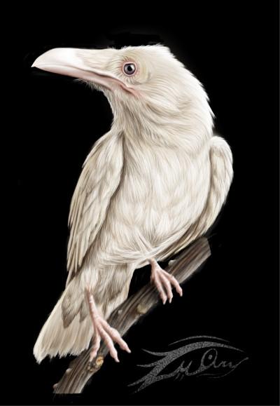 Albino | i.mary | Digital Drawing | PENUP