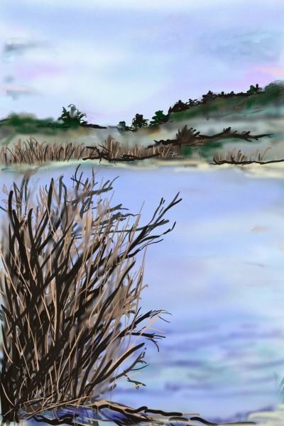 Landscape Artwork | Barbra | PENUP
