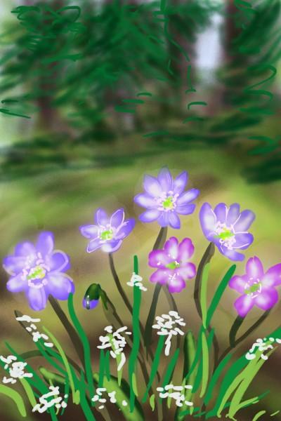 Plant Artwork | Barbra | PENUP