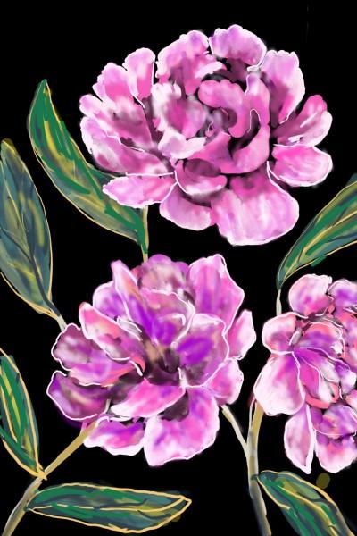 Plant Artwork   Barbra   PENUP